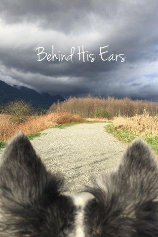 Behind His Ears