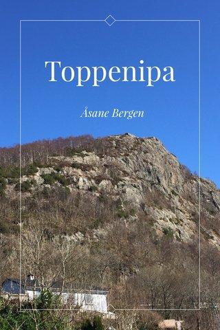 Toppenipa Åsane Bergen