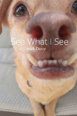 See What I See with Daisy