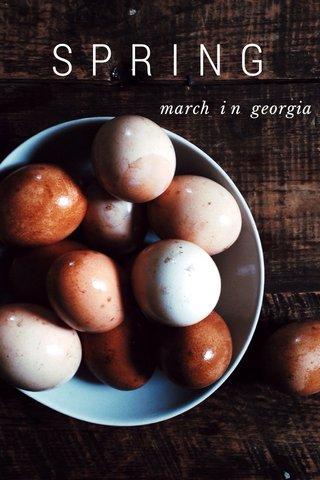 SPRING march i n georgia