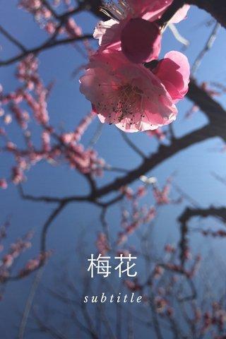 梅花 subtitle