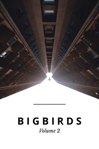 BIGBIRDS Volume 2