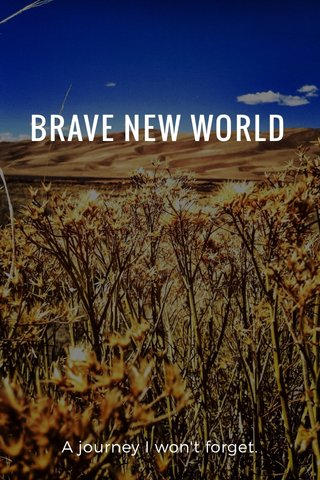 BRAVE NEW WORLD A journey I won't forget.