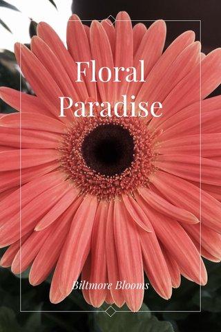 Floral Paradise Biltmore Blooms