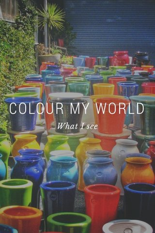 COLOUR MY WORLD What I see