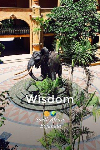 Wisdom 🌞🌍 South Africa Bojanala