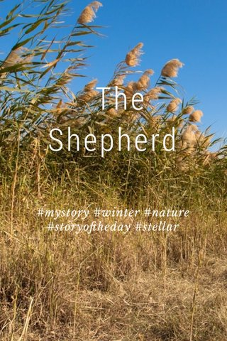 The Shepherd #mystory #winter #nature #storyoftheday #stellar
