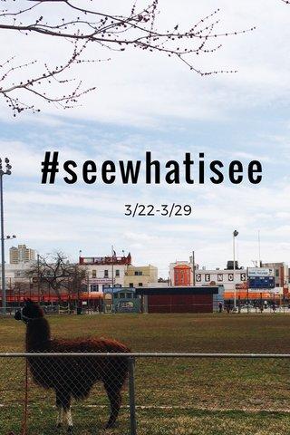 #seewhatisee 3/22-3/29