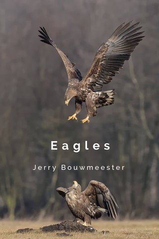 Eagles Jerry Bouwmeester