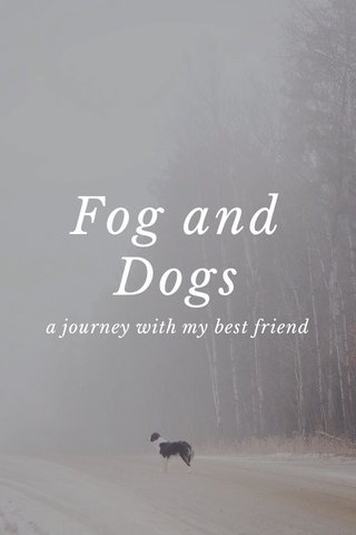 Fog and Dogs a journey with my best friend
