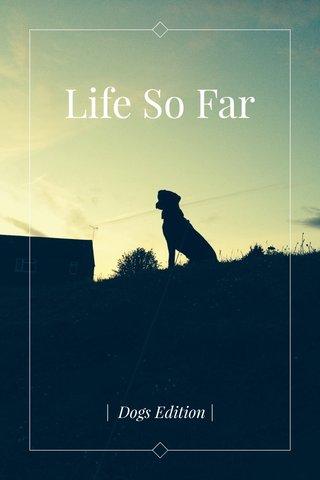 Life So Far   Dogs Edition  