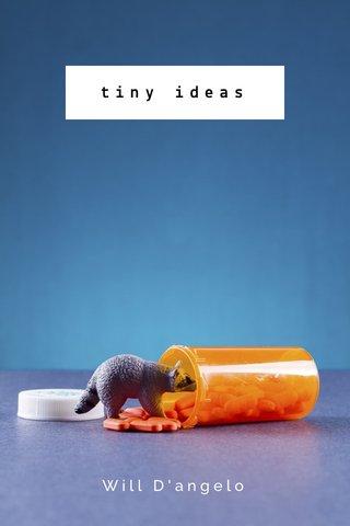 tiny ideas Will D'angelo