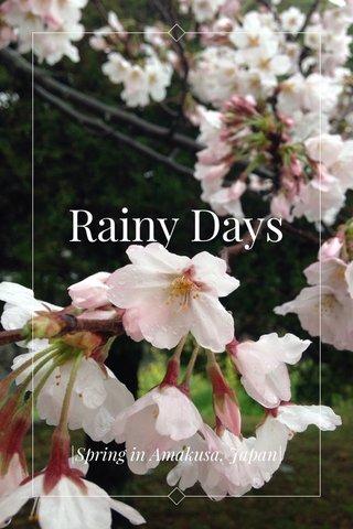 Rainy Days  Spring in Amakusa, Japan 
