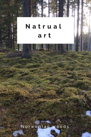 Natrual art Norwegian woods