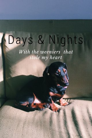 Days & Nights With the weeniers that stole my heart