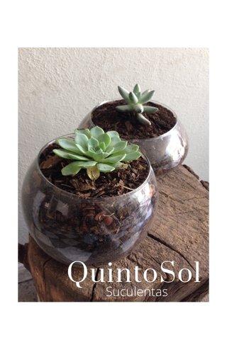 QuintoSol Suculentas