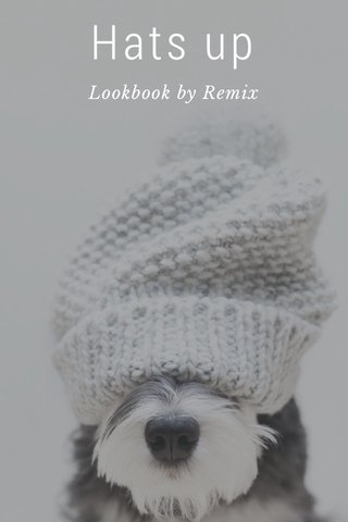 Hats up Lookbook by Remix