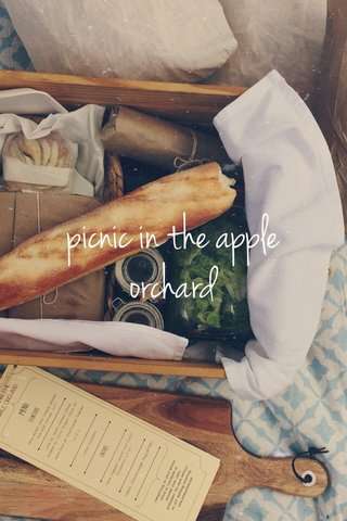 picnic in the apple orchard
