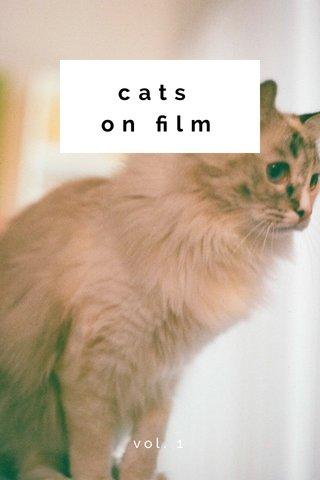 cats on film vol. 1
