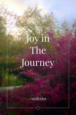 Joy in The Journey #stellerjoy