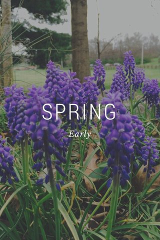 SPRING Early