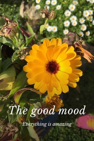 The good mood Everything is amazing