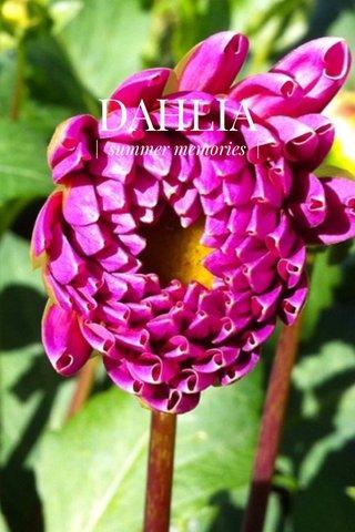 DAHLIA | summer memories |