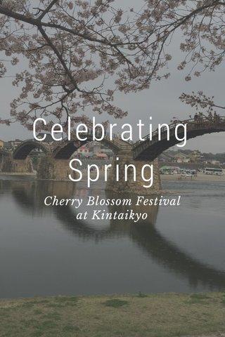 Celebrating Spring Cherry Blossom Festival at Kintaikyo