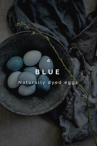 BLUE Naturally dyed eggs
