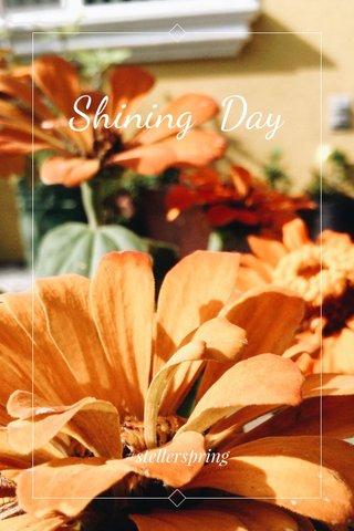 Shining Day #stellerspring