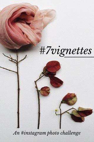 #7vignettes An #instagram photo challenge