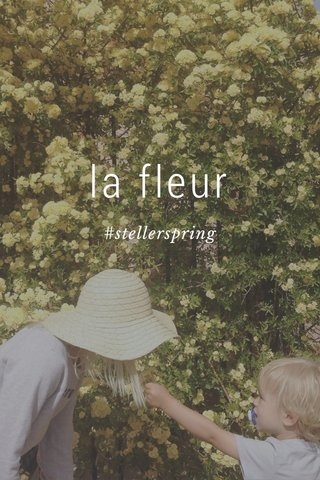 la fleur #stellerspring