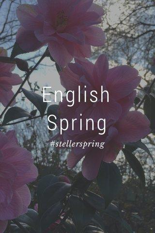English Spring #stellerspring