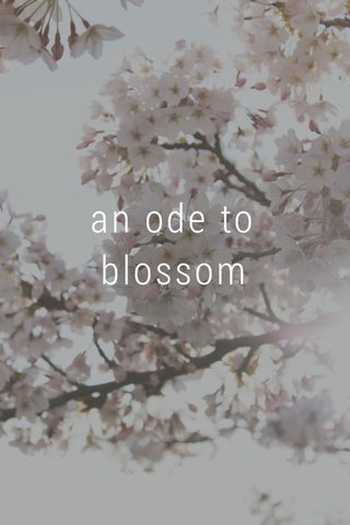 an ode to blossom