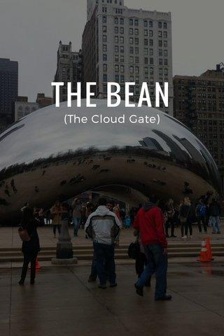 THE BEAN (The Cloud Gate)
