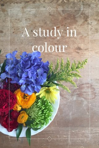 A study in colour