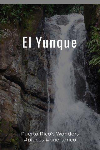 El Yunque Puerto Rico's Wonders #places #puertorico