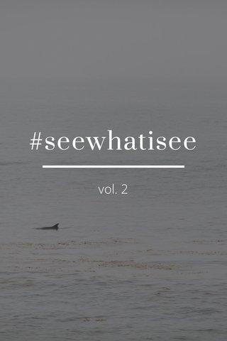 #seewhatisee vol. 2