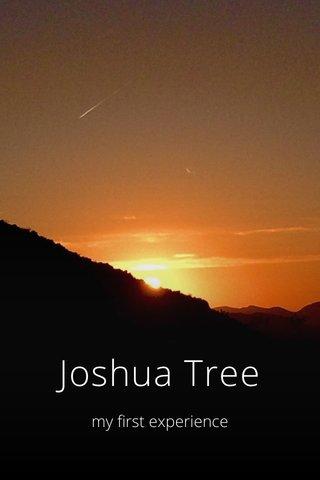 Joshua Tree my first experience