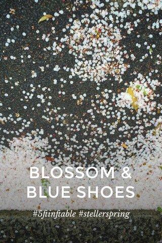 BLOSSOM & BLUE SHOES #5ftinftable #stellerspring