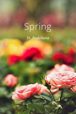Spring In Andalusia