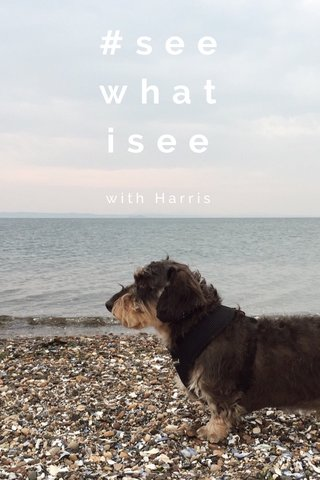 #seewhatisee with Harris