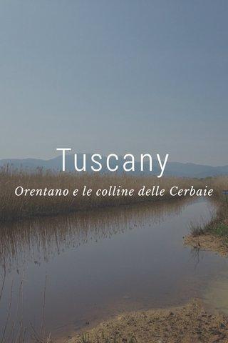 Tuscany Orentano e le colline delle Cerbaie