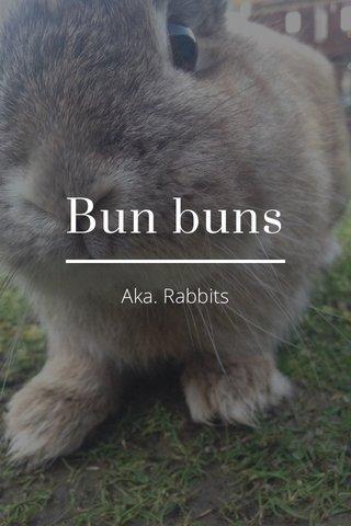 Bun buns Aka. Rabbits