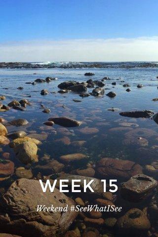 WEEK 15 Weekend #SeeWhatISee