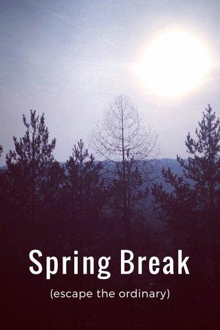 Spring Break (escape the ordinary)