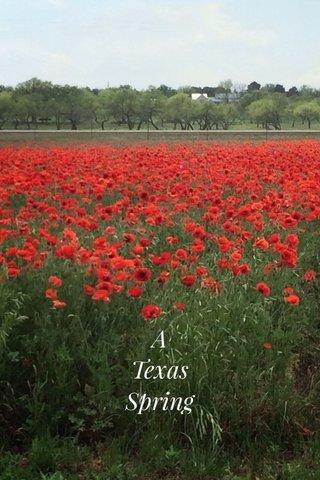 A Texas Spring