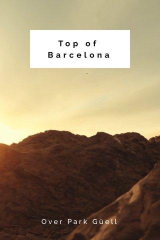 Top of Barcelona Over Park Güell