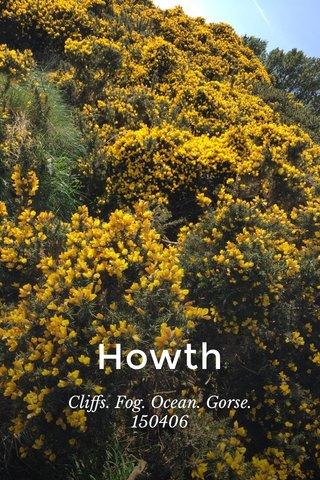Howth Cliffs. Fog. Ocean. Gorse. 150406