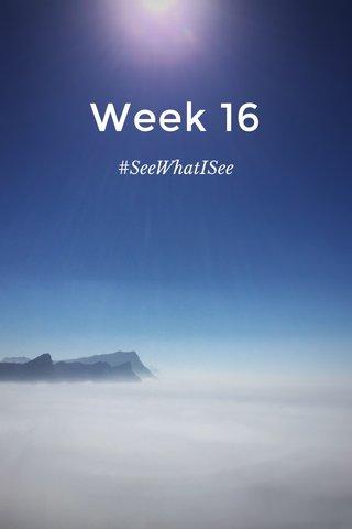 Week 16 #SeeWhatISee